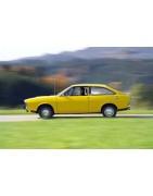 Venta online de recambios para Renault 15 en arfiguerola.com